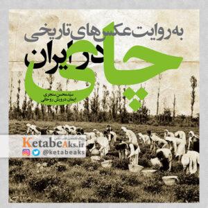چای در ایران به روایت عکس های تاریخی / 1399