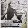 ماهی ها در سکوت میمیرند/ به کوشش یاسر عرب و محسن زارعی/ 1392