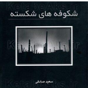 شکوفه های شکسته /سعید صادقی/ 1381