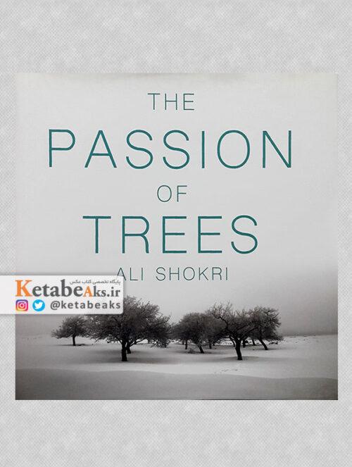 مصائب درختانTHE PASSION OF TREES/عکس های علی شکری/1397