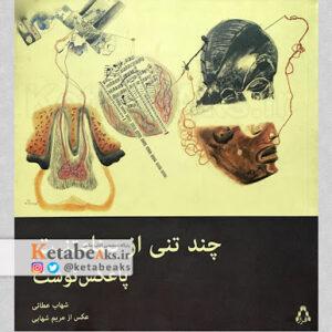 چند تنی از بینامتنیت یا پاعکس نوشت/ شهاب عطایی