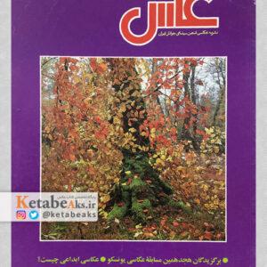 نشریه عکس 87 / مسعود امیرلویی