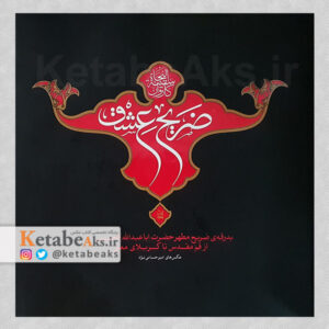 ضریح عشق / امیر حسامی نژاد / 1393